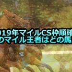 【2019年マイルCS枠順確定】今年のマイル王者はどの馬だ!!