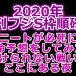 【2020夕刊フジS枠順確定】ニートが必死に本命予想をしてみた!負けられない戦いがここにある夜