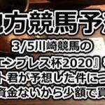 【地方競馬予想】3/5川崎競馬の『エンプレス杯2020』をニート君が予想した件について~軍資金ないから少額で買う夜
