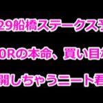【3/31船橋ステークス予想】中山10Rの本命、買い目などを公開しちゃうニート君w