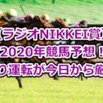 【ラジオNIKKEI賞】2020年競馬予想!あおり運転が今日から厳罰化