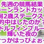 先週の競馬結果『キーンランドカップ』『新潟2歳ステークス』の的中はしたのか?ゴドルフィンブルーが輝いた夜のけっかはっぴょぉ~