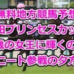 【無料地方競馬予想】園田プリンセスカップ~2歳の女王に輝くのは~ニート参戦の夕方