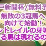 【神戸新聞杯/無料予想】無敗の3冠馬へ向けて始動!コントレイルの牙城を崩せる馬は現れるのか?