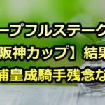 【ホープフルステークス】【阪神カップ】結果~三浦皇成騎手残念な夜~