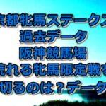 京都牝馬ステークス過去データ/阪神競馬場~荒れる牝馬限定戦を勝ち切るのは?データ分析