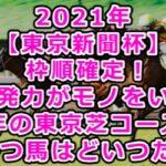 2021年【東京新聞杯】枠順確定!最終予想/瞬発力がモノをいう今年の東京芝コースで勝つ馬はどいつだ!