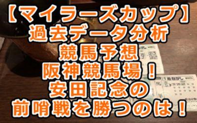【マイラーズカップ】過去データ分析/競馬予想/阪神競馬場!安田記念の前哨戦を勝つのは!