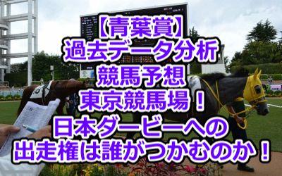 【青葉賞】過去データ分析/競馬予想/東京競馬場!日本ダービーへの出走権は誰がつかむのか!