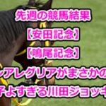 先週の競馬結果【安田記念】【鳴尾記念】!グランアレグリアがまさかの2着!調子よすぎる川田ジョッキー